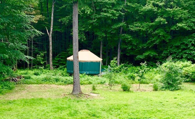 A Yurt of Ones Own