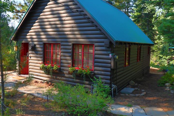 Cozy 1933 Log Cabin