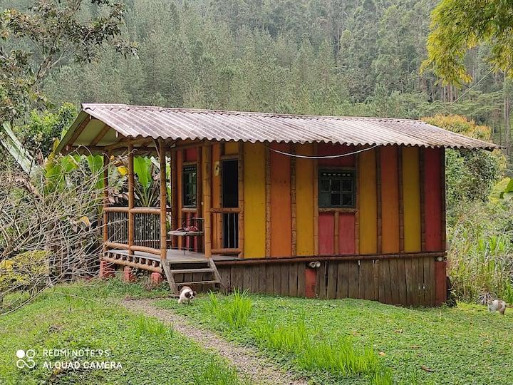 Alojamiento con vista a la reserva