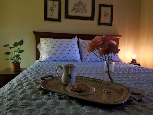 Cozy Room & Continental Breakfast
