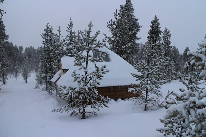 Aurora husky hut - Inari - Chatka w górach