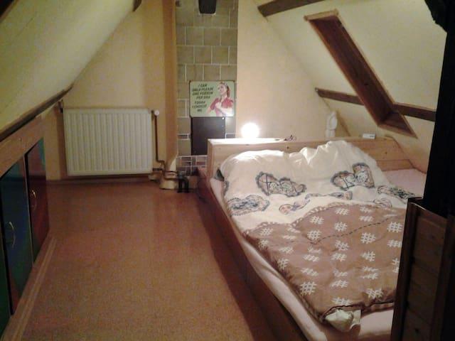 1 1/2 Zimmer unterm Dach mit großem Bett