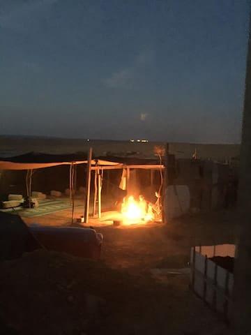 Suliman's Bedouin Tent - Yeruham - Tent