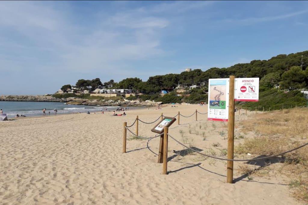Indicaciones en la playa para regular un uso correcto del espacio