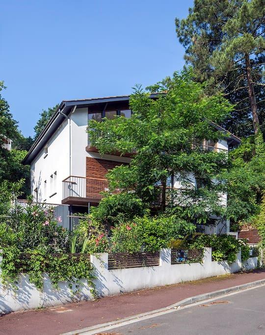 L'appartement se situe derrière la végétation, totalement indépendant de la maison principale.