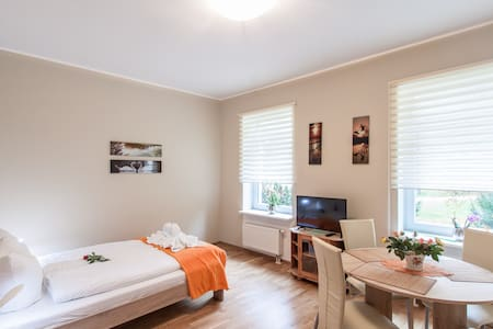 Park Villa Apartments 03,small groups-send request - Bad Kissingen - Serviced flat