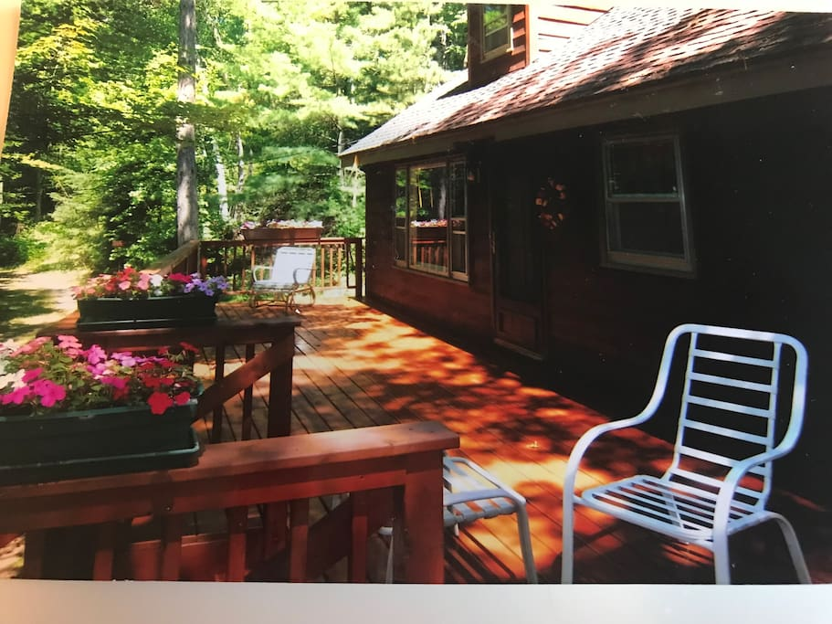 Large Deck & Gas Grill