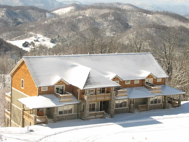 The Views at Wolf Ridge 302