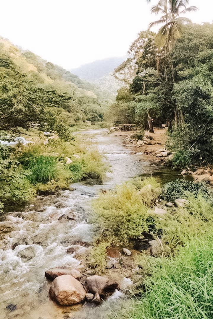 The Horcones River