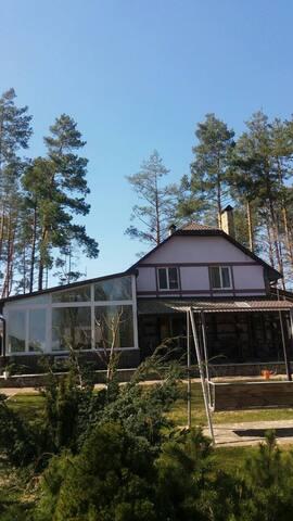 Прекрасный дом в тихом сосновом лесу