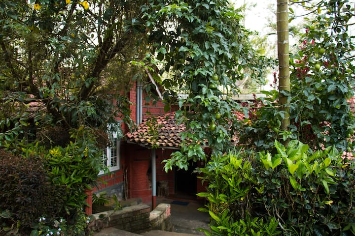 Embrace the nature in Coorg