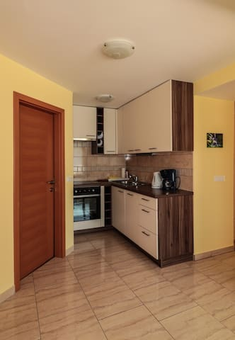 1-bedroom apartment with kitchen and big terrace E