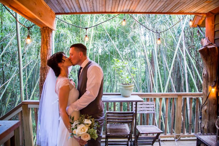 Gorgeous intimate wedding at dusk in the treehouse.  We curate a lot of gorgeous diverse wedding. See more at our website:  Alpacatreehouse. Every wedding has had their individual stamp but there is something about the juxtaposition of folks in formalwear mingling with alpacas and llamas and walking through the tropical bamboo forest with our treehouse as the crown jewel....that is amazing. Add in a violinist's aching notes or a solo saxophone and you are emotional before the vows.