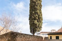 View of the tiny piazza where Casetta Bonsi is located. You can spot the tall cypress tree from down the hill to guide you home.