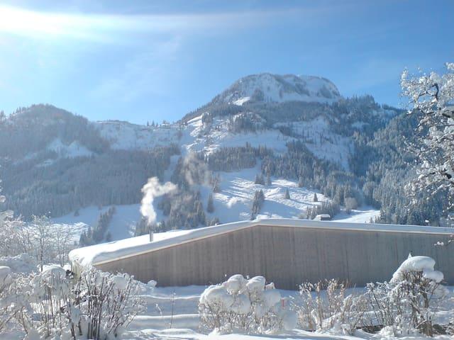 Sonniger Ausblick zum Berg