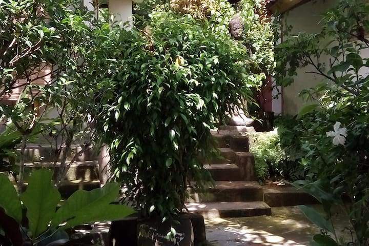 Garden Entrance to your Place