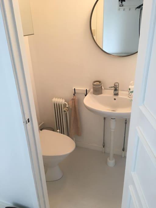 Det mindre badrummet