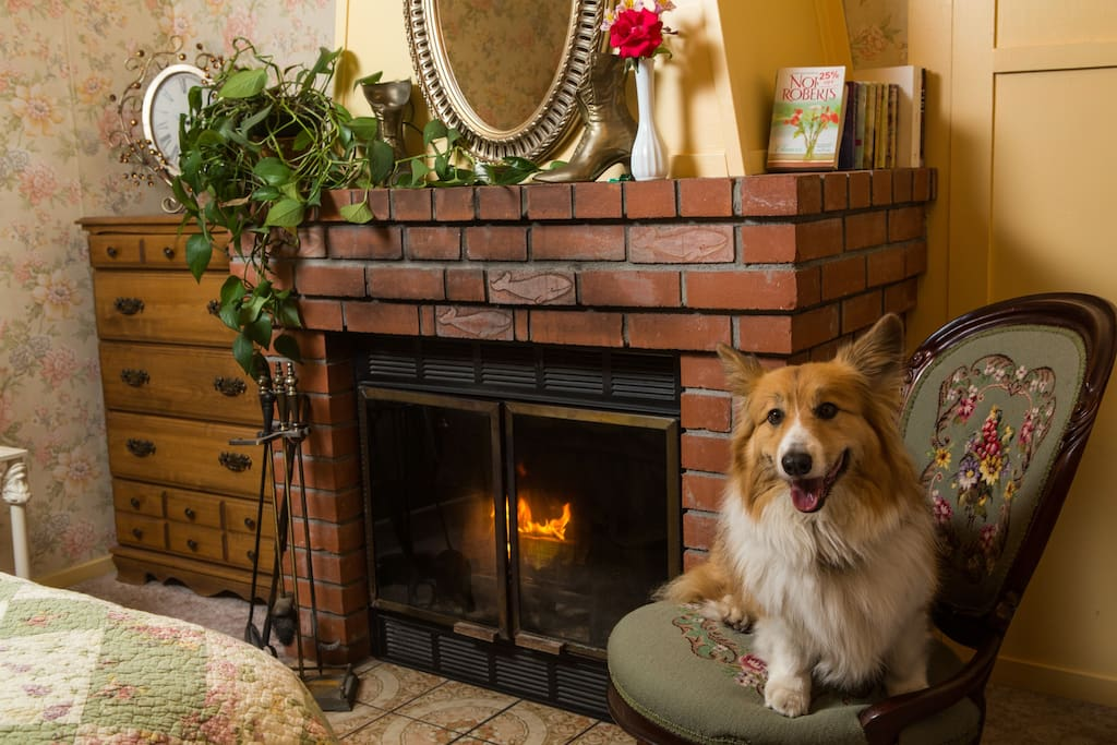 Summertime fireplace - corgi not included.
