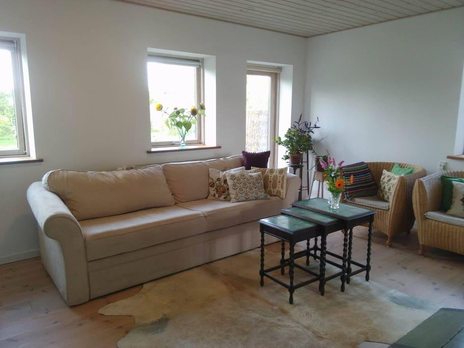 Stue - Living Room - Wohnzimmer