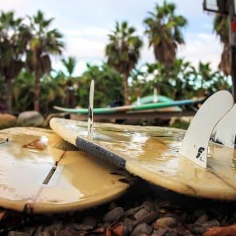 surf cabaña