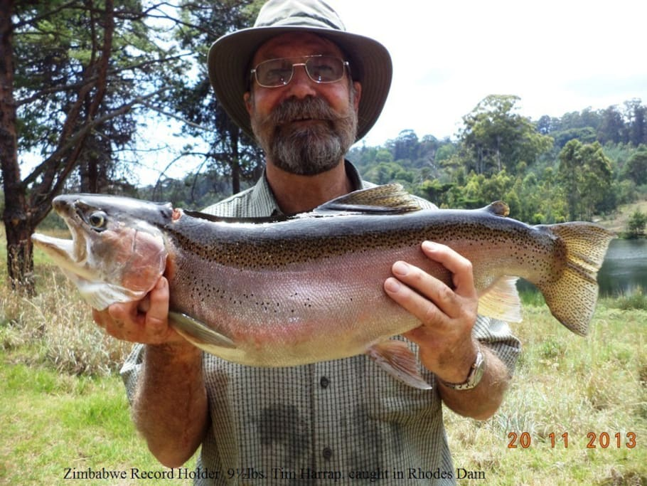 Zimbabwe Trout Record from Rhodes Dam