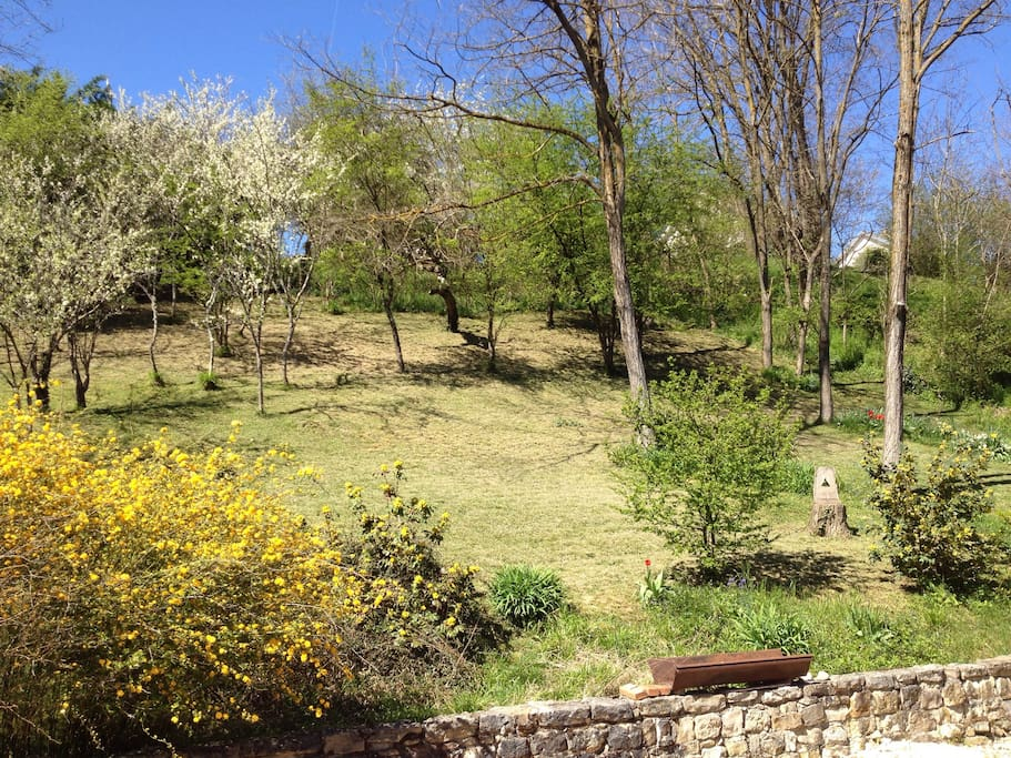 Pleasant gardens on the slope behind the house