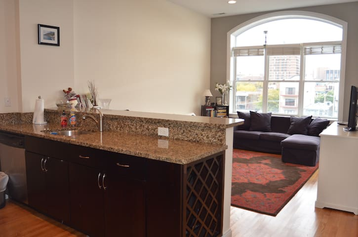 Boystown 2 Br Penthouse in Lakeview - Chicago - Apartamento