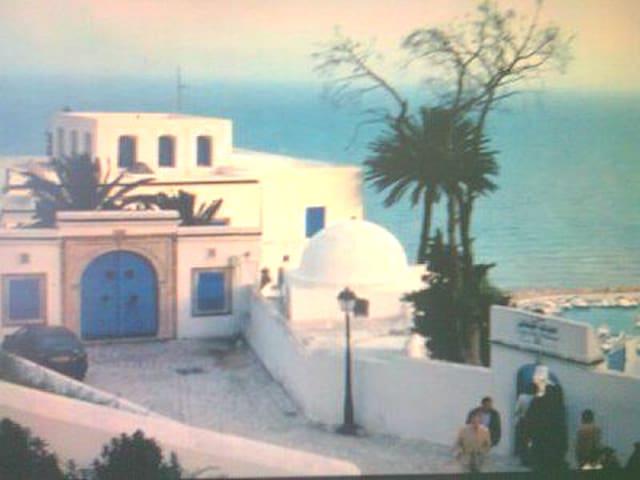 فلل مع حديقة مسبح للايجار بتونس و المرسى  الحمامات