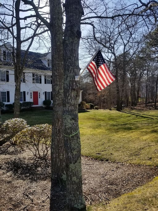 Park in the driveway with this American flag on the tree