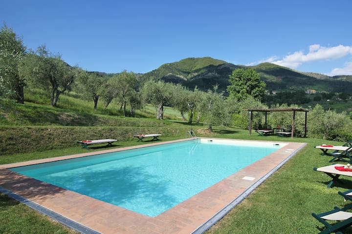 B&B on the lucca's hills with pool
