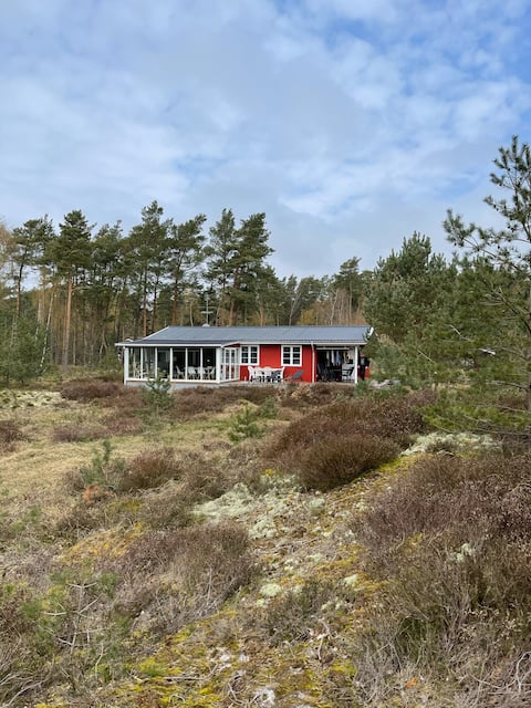 Amazing cottage in the forest, close to the beach