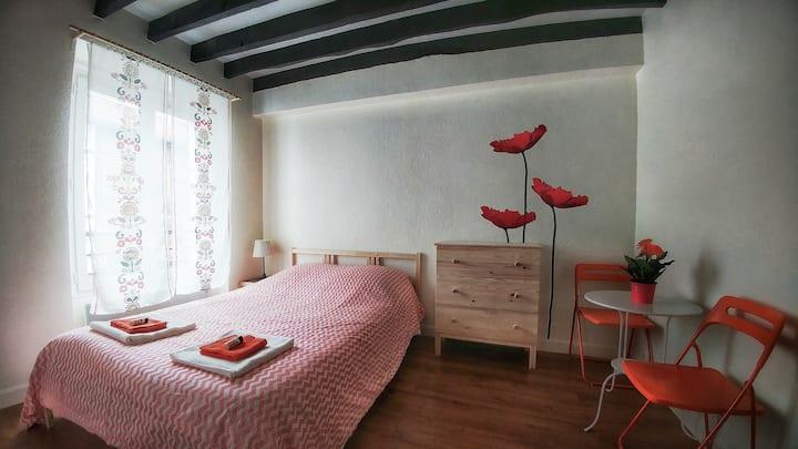 Cute Studio in Paris 15