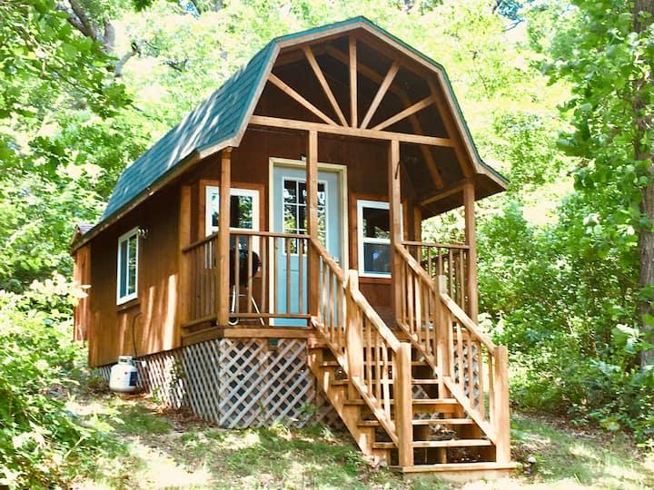 Hillside Cabin at Earthology Retreat Center