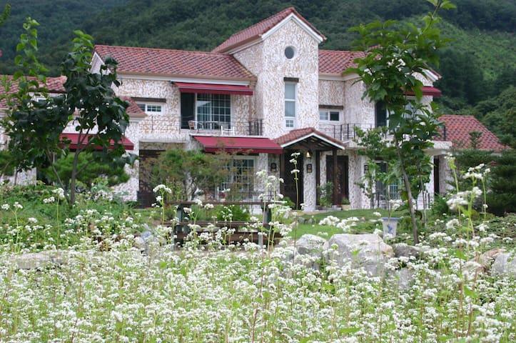 솜다리 - Chungju-si - Casa