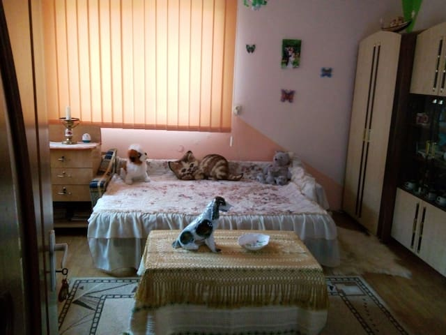 Private/Cosy/ room in Cluj Napoca - Cluj-Napoca