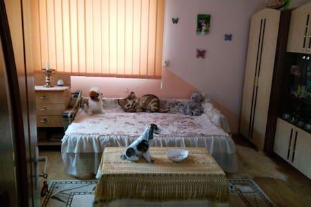 Private/Cosy/ room in Cluj Napoca - Cluj-Napoca