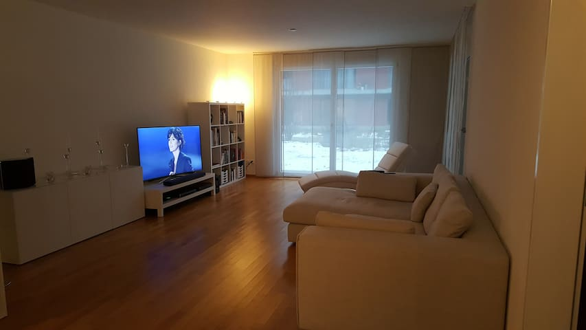 Modern and nice apartment close to Basel - Rheinfelden - Apartment