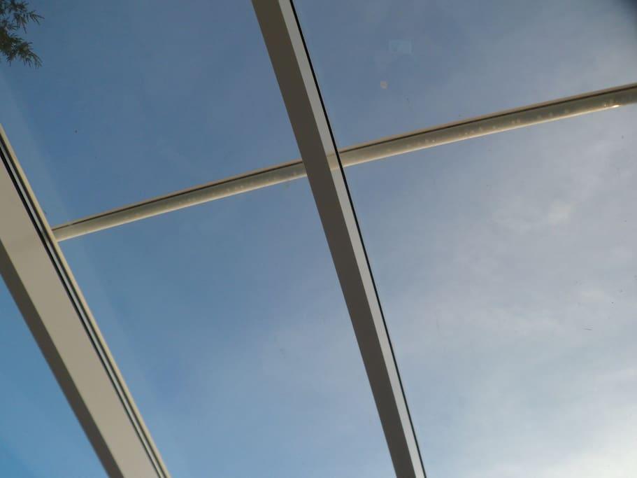 Der Blick nach oben...in den blauen Himmel