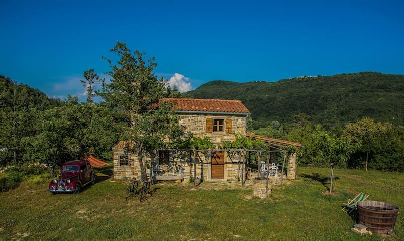 Vila Istra Autentica - Krkavče - House
