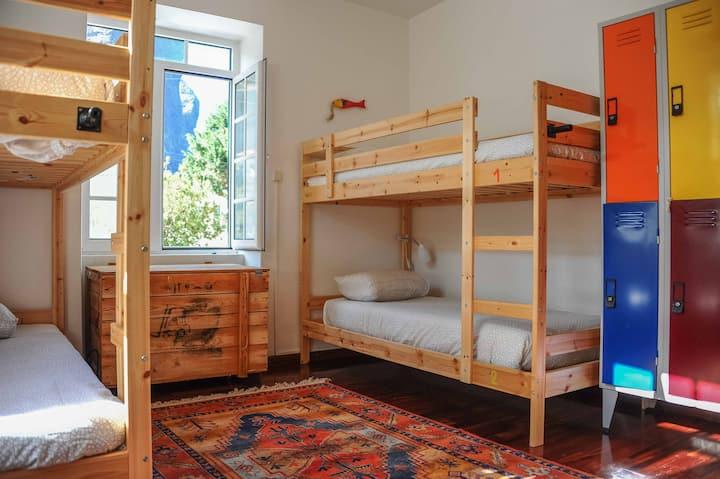 Jaca Hostel   Dorm Room