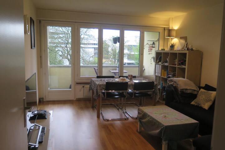 Ihr gemütliches Zuhause in der Stadt Bern