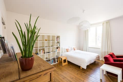 Spacious Apartment in centre Ghent