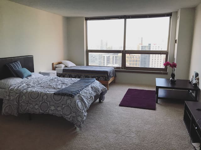 Chicago Downtown Cozy One Bedroom Apartment Appartamenti In Affitto A Chicago Illinois Stati