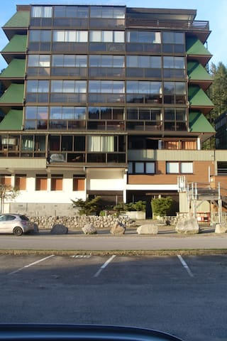 Apartment with wonderful mountain view - La Bresse
