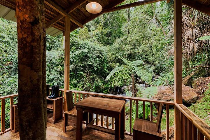 The Forest Retreat | Rustic Rainforest Luxury