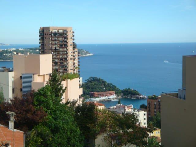 """квартира рядом с Монако,резиденция""""MonteCarlo Bay"""""""