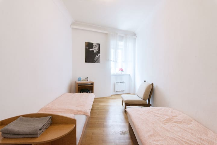 lovely room near charles Bridge