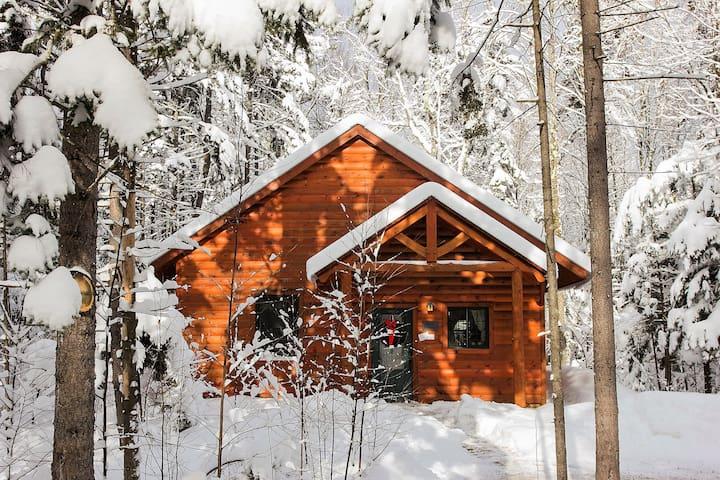 Serene Outlook Cabin
