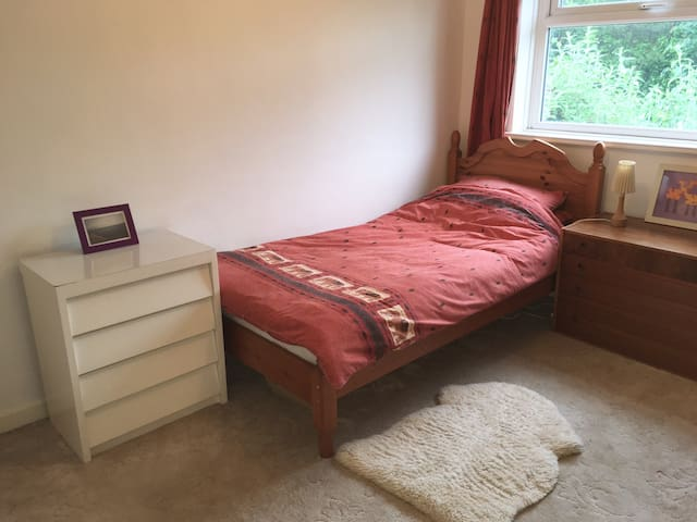 Spacious room in a lovely North Wales village