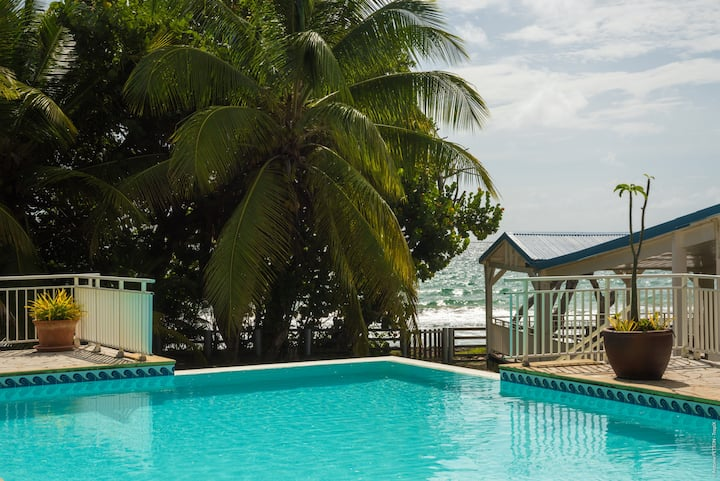 Villa Les Amandiers (8 rooms)  at the water's edge